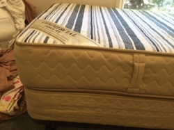 Free Single bed and base